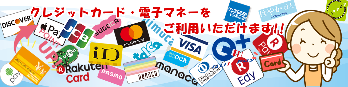 nagoyashi-toyoakeshi-reform-credit card
